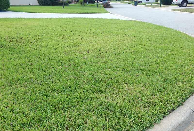 Integrity Lawn Care Jacksonville FL